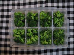 ブロッコリーの冷凍保存